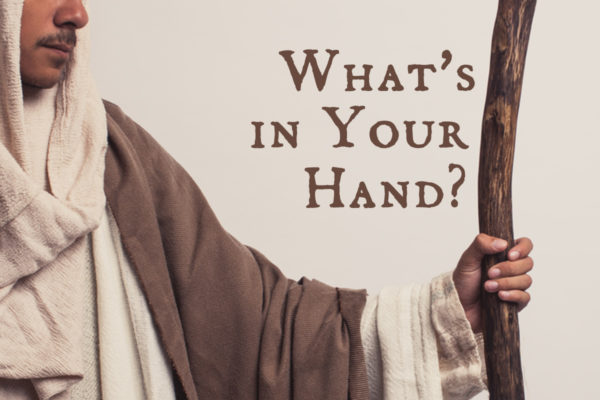 What's in Your Hand